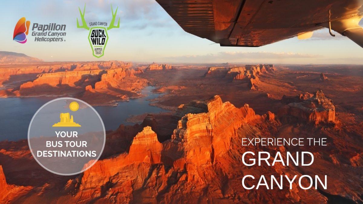 Home page Presentazione Prezi Papillon Helicopters